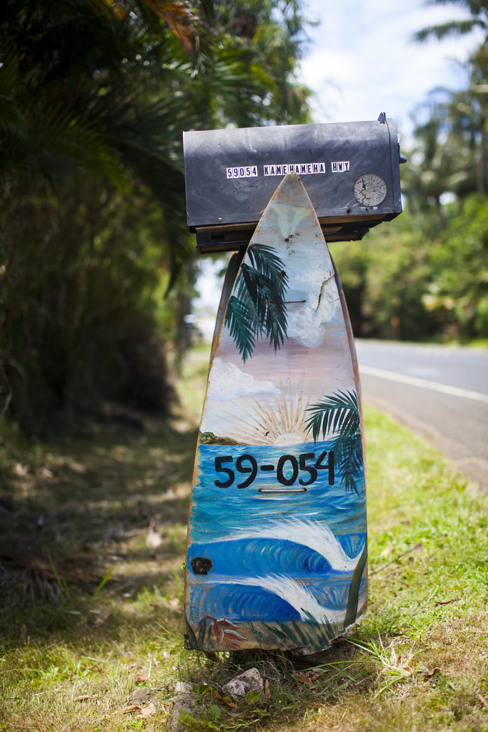 20150528-np-Oahu-4060.jpg