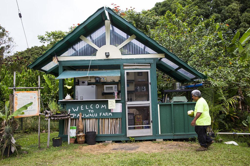 20150530-np-Maui-3653.jpg